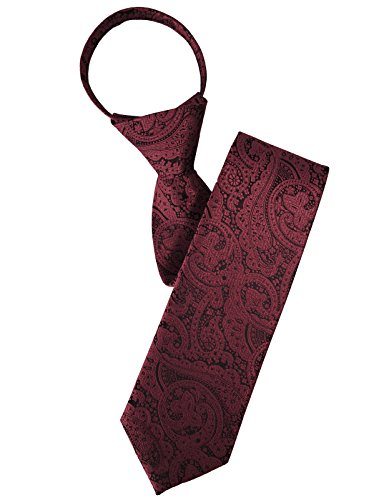 H2H Mens Comfortable Zipper Neck Tie Paisley Patterned Of Various Colors WINE NONE (KMANT0118)