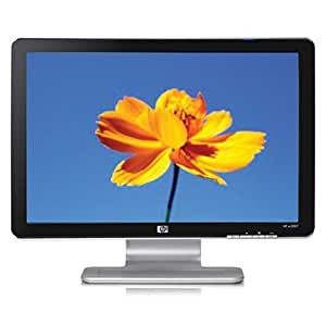 HP W2007 20-inch Widescreen Flat Panel LCD Monitor