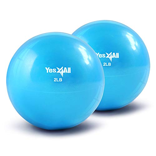 Yes4All Soft Weighted Toning Ball/Medicine Sand Ball - Great for Exercise, Workout - Soft Weighted Ball (2 lbs, Blue) - Total Weight: 4 lbs (Pair)