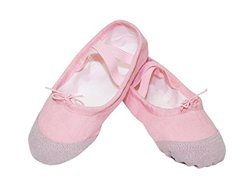 Baby Pink Leather Ballerina Shoes - Ballet Slippers Dance Shoes Girls Slip On Canvas Non Slip Leather Sole Ballerina Flat Shoes (DSK-01) Pink EU 30 US 12/13