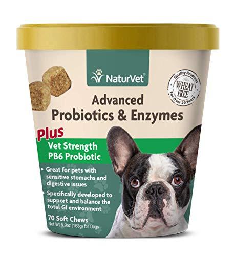 NaturVet  Advanced Probiotics