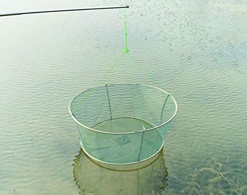 FidgetFidget Fishing Net Folding Drop Landing Great Pier Harbour Pond Prawn Bait Crab Shrimp ()