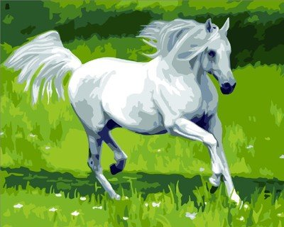 JynXos Wooden Framed Paint By Number Horses Linen Canvas DIY Painting - Single Running Horse