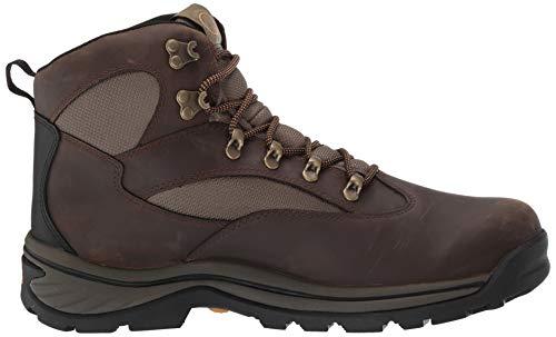 Timberland Men's Chocorua Trail Mid Waterproof, Brown/Green...