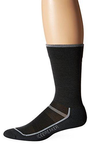 Icebreaker Men's Multisport Light Crew Socks, Oil/Pearl, Large