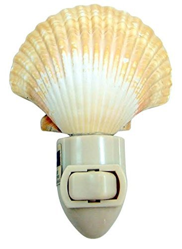 Real Seashell Nightlight Mexican Deep Scallop Shell Light 4 Inch Tall Home Nautical Beach Decoration Gift