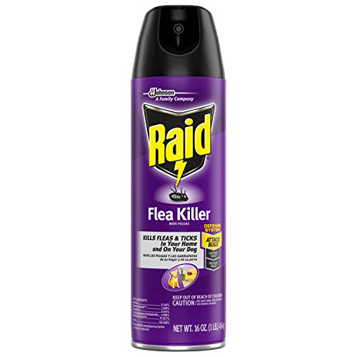 Raid Flea Killer, 16 Oz (1 Ct)
