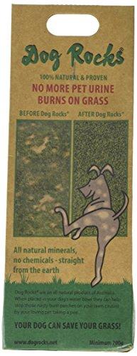 Rock Potty (Dog Rocks Prevent Grass Burn Marks, 2 Month Supply)