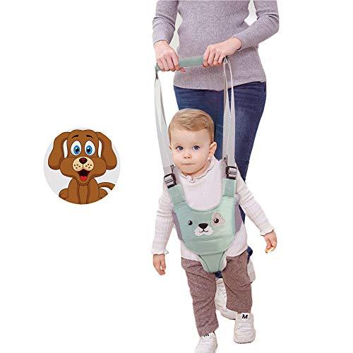 Baby Walker Walking Harness for Kids Handheld Safe Stand Up Walker Assistant Belt for Toddlers Infant Learning to Walk (Green)