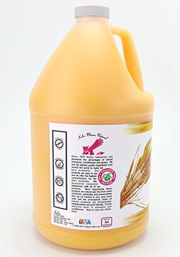 Image of Kelco Pro Gold Shampoo Gallon