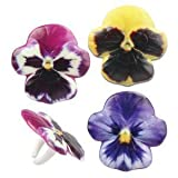 Pansy Flower Cake Cupcake Decoration Rings Flower Favors - 24 pcs by Bakery Supplies