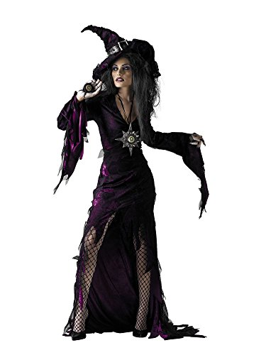 Disguise Sultry Sorceress Costume for Women]()