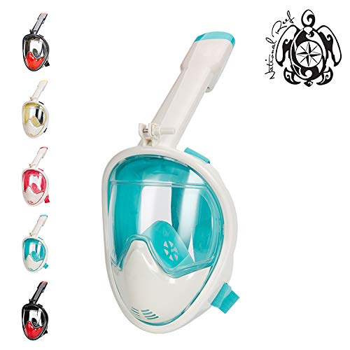 National Reef Full Face Snorkel Mask Compatible with and Includes a Detachable GoPro Mount | Best Snorkeling and Diving Masks for Adults and Kids for 180 Degree View (Aqua, L/XL)