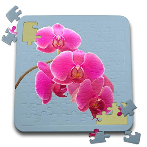 Orchid Photograph - 3dRose Natalie Paskell - Flora and Fauna - Pink Orchids Photograph in Paint Effect. - 10x10 Inch Puzzle (pzl_293377_2)