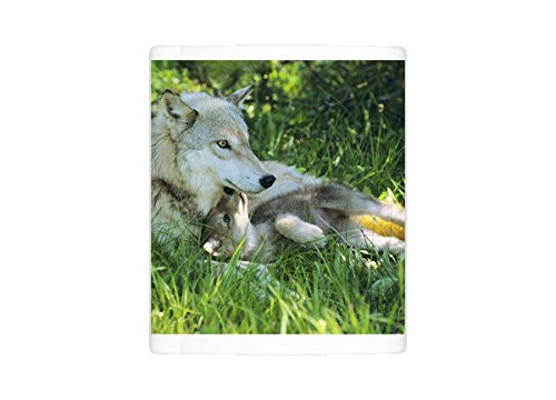 Photo Mug of Grey wolf - mother with young pup lying in grass