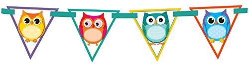 Carson Dellosa Banner, Colorful Owls (102038)