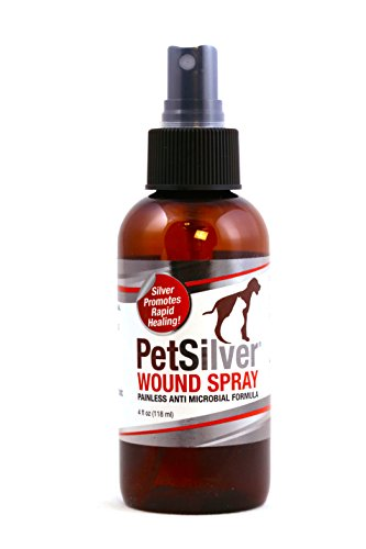 PetSilver 50 ppm Wound Spray with New Chelated Silver for Cats, Dogs and - Stop Spray Hot Gel