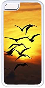 Birds Silhouettes At Sunset Apple iPhone 5C Case, iPhone 5C Cases Hard Shell Cover Skin Cases