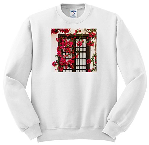 Price comparison product image 3dRose Danita Delimont - Flowers - Spain, Andalusia. Cordoba. Red Bougainvillea and House Window. - Sweatshirts - Youth Sweatshirt Small(6-8) (SS_277893_10)