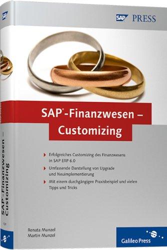 sap finanzwesen customizing pdf