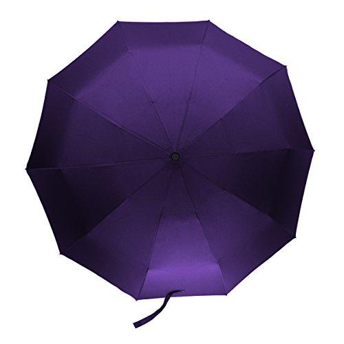 Travel Compact Umbrella Windproof Auto Open Close Button 10 Ribs (Purple) Review
