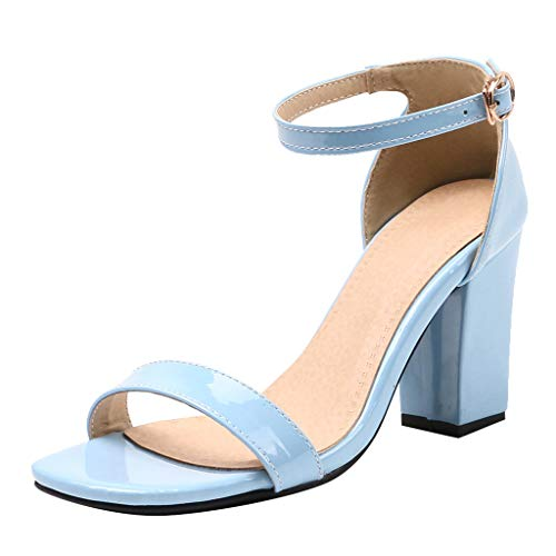 Midress Womens Ankle Strap Chunky Block High Heel Zipper Closure, Party Dress Open Toe Sandals High Heel for Wedding Party