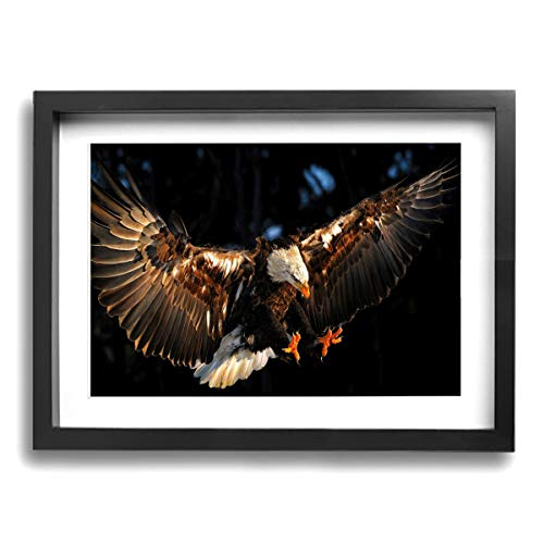 Bald Eagle Contemporary Giclee Canvas Print Framed Artwork Pictures Paintings On Wall Art For Home Office Decorations Wall Decor