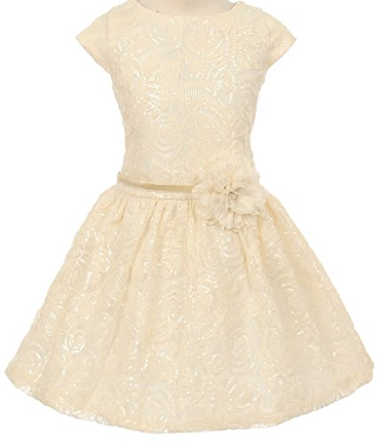 Ivory Embroidered Taffeta Dress - 4