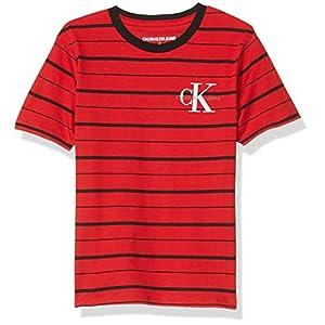 Best Epic Trends 41LcLYuPoEL._SS300_ Calvin Klein Boys' Short Sleeve Stripe Crew Neck