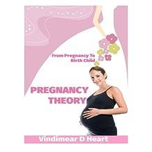 Pregnancy Theory: From Pragnancy to Birth Child