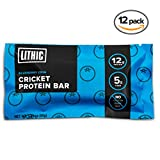 Lithic Cricket Protein Bar :: Blueberry Chia :: Made with 100% Pure Cricket Flour :: Paleo Friendly, Sustainable Food, Dairy Free, Gluten Free Protein Bar