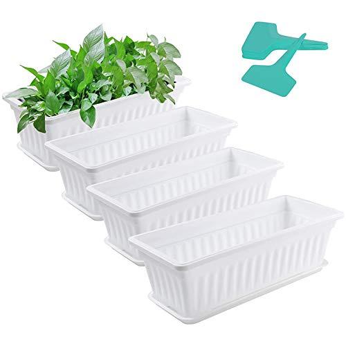 JVSISM 4 팩 20 식물 라벨 트레이와 냄비를 심기 플라스틱 직사각형 창 프레임 야채 심기 용기 세트