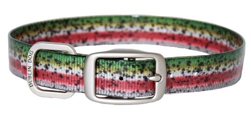 Dublin Dog Koa Collection Trout Series 12.5 by 17-Inch Dog Collar, Medium, Rainbow Trout