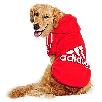 Abbigliamento felpa autunno-inverno per cane taglia piccola