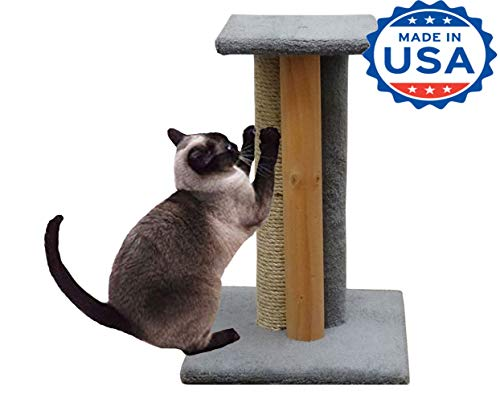 CozyCatFurniture 24 inches USA Made Wooden Cat Scratcher with Perch, Sisal Scratching Post, Bare Wood Pole, Gray Carpet Cat Wood Scratching Post