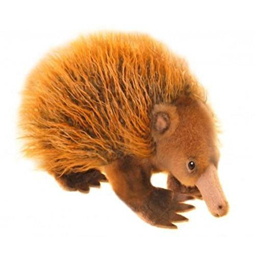 Bocchetta Plush Toys Harry Echidna Australian Soft Toy, Stuffed Animal, Size -