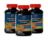 Natural Depression Supplements - Ashwagandha Root Extract 920mg - Testosterone Booster - 3 Bottles 360 Capsules