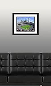 "NFL Carolina Panthers Bank of America Stadium, Beautifully Framed and Double Matted, 18"" x 22"" Sports Photograph"
