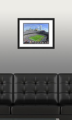 """NFL Carolina Panthers Beautifully Framed and Double Matted 18/"""" x 22/"""" Sports Photograph"""