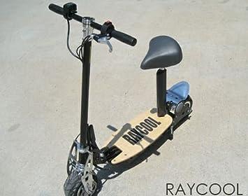 Patinete Electrico Raycool EVO-300w | patinete eléctrico ...