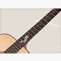 NUYI Spruce Coco Piña Guitarra Acústica para Principiantes ...