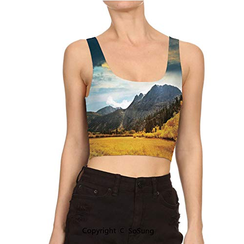 (Women Sexy Cami Vest Crop Golden Colored Grassland Sunlight DAR Tank Top Blouse)