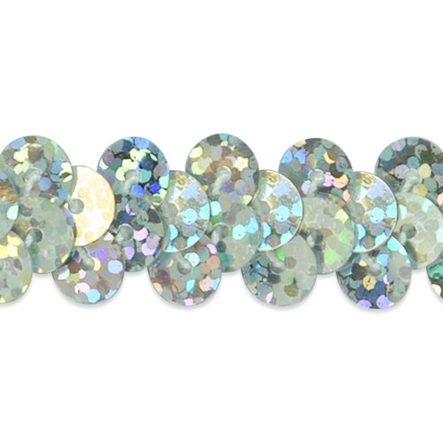 Expo International 20-Yard of 1-Row Starlight Hologram Stretch Sequin Trim, 3/8-Inch, Silver by Expo International Inc.