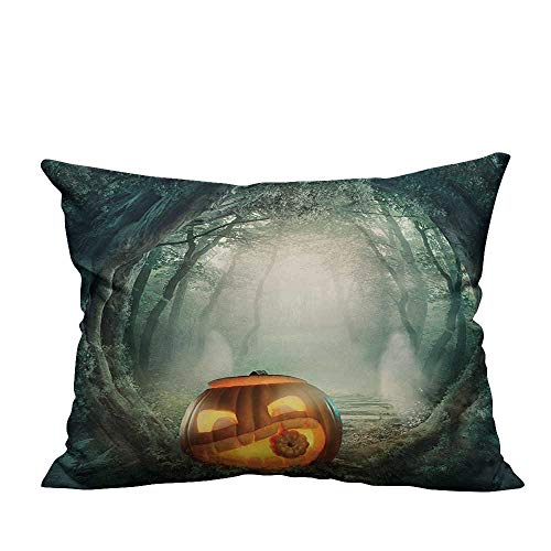 YouXianHome Decorative Couch Pillow Cases Big Scary Halloween Pumpkin in Enchanted Forest Mystic Twilight Party Themed Or Easy to Wash(Double-Sided Printing) 20x35.5 inch