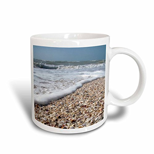 3dRose Seashells, Sanibel Island, Gulf Coast, Florida - David R. Frazier, Ceramic Mug, - Outlets Florida Sanibel