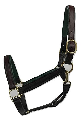 Tack Shack of Ocala Padded Leather Horse Halter, Handcrafted Brown Bridle Leather, Solid Brass Hardware and Snap, English Chin, Double Stitched with Rolled Throat (Hunter Green)