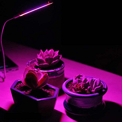 Led Propagation Lights in US - 9