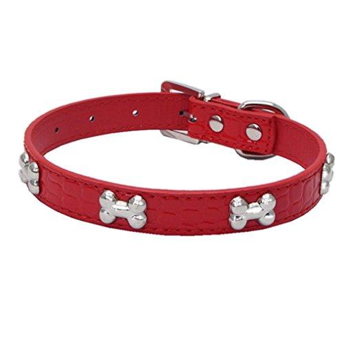 Livoty Exquisite Adjustable Buckle Metal Bone Dog Puppy Pet Collars (S, Red)