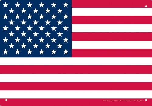 Aquarius USA Flag Tin Sign