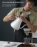 Electric Gooseneck Kettle Temperature Control, Pour